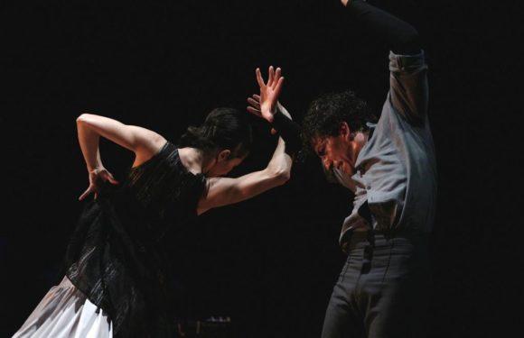 Hvězdná show už se blíží: Rytmy Flamenca vás chytnou za srdce!